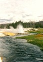 Photo - Yellowstone National Park - Rivi�re Firehole entour�e de geysers