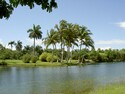 Photo - Proximit� de Miami - Jardin tropical Fairchild