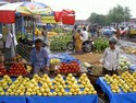 Photo - Chennai - Marché de Koyambedu - Vente de fruits exotiques