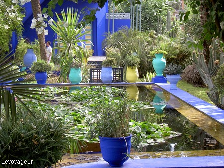 Marrakech Jardin Majorelle Le Bleu Majorelle Predomine Dans Ce