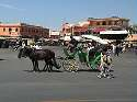Photo - Marrakech - Calèche sur la place Jemaa El Fna